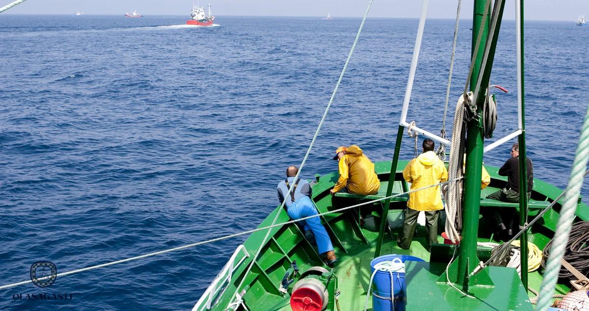 conservas_olasagasti_mar_cantabrico_cantabrian_sea_the_best_anchovy