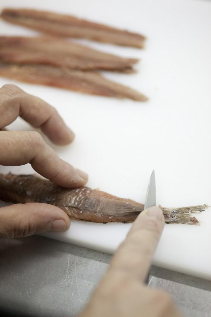 Un trabajo minucioso, totalmente manual en la temporada de la anchoa del Cantábrico