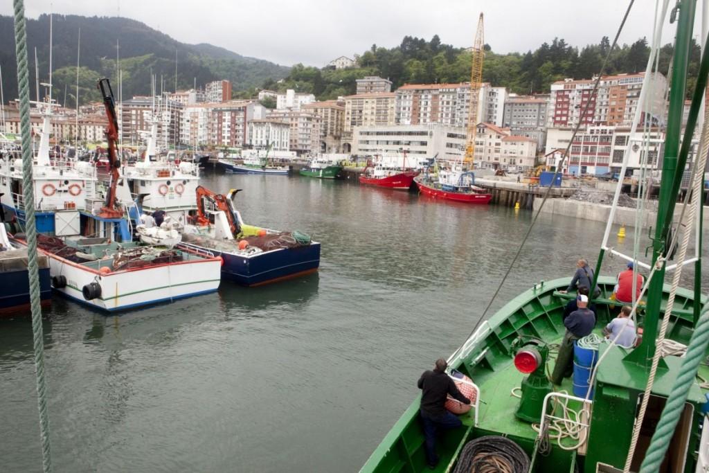 Llegada de los barcos al puerto de la Anchoa del Cantábrico