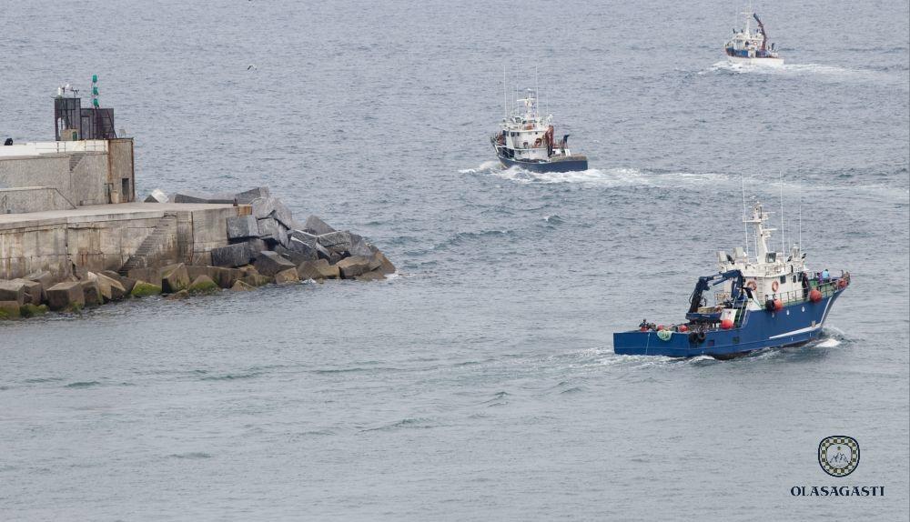 conservas_olasagasti_puerto_mar_cantabrico_pesca_anchoa_anchovy_fishing_basque_harbour_cantabrian_sea