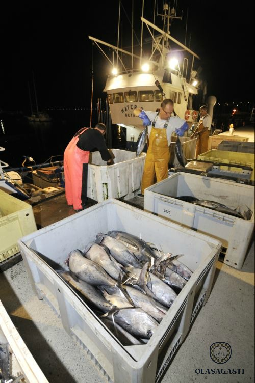 conservas_olasagasti_canned_fish_fishing_cantabrian_harbour