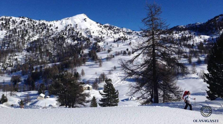 conservas_olasagasti_dentici_montaña_deporte_sport_snow_esqui_fondo_alpes
