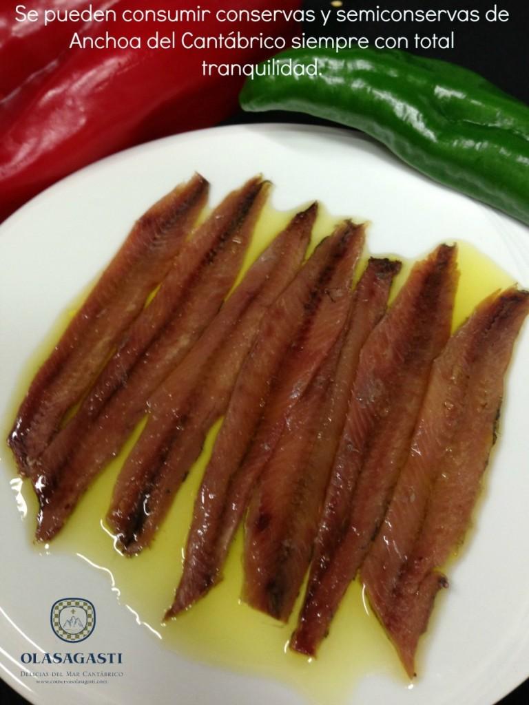 filetes de Anchoa del Cantábrico en salazón Olasagasti sin anisakis