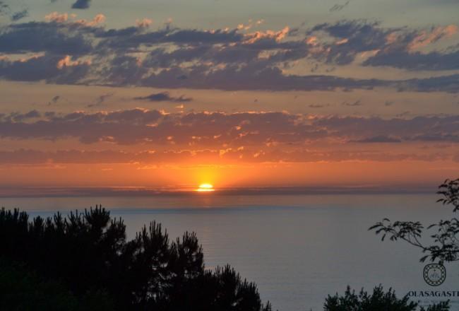 conservas-olasagasti-atardecer-verano-bonito-del-norte-anchoa-mar-cantabrico