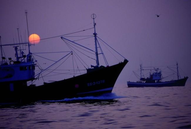 conservas-olasagasti-pesca-bonito-del-norte-mar-cantabrico