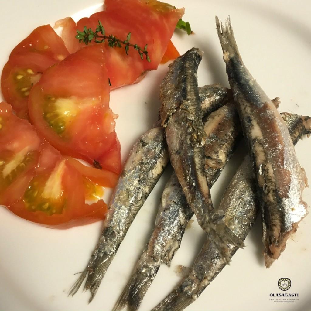 Anchoa del Cantábrico Campaña 2016, fresca y frita