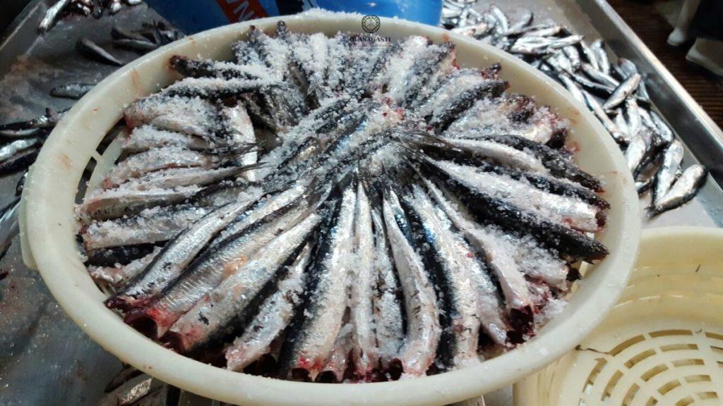 anchoa del cantabrico en el puerto de ondarroa