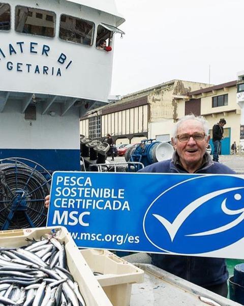 Primera anchoa del Cantábrico recién pescada en el puerto de Getaria