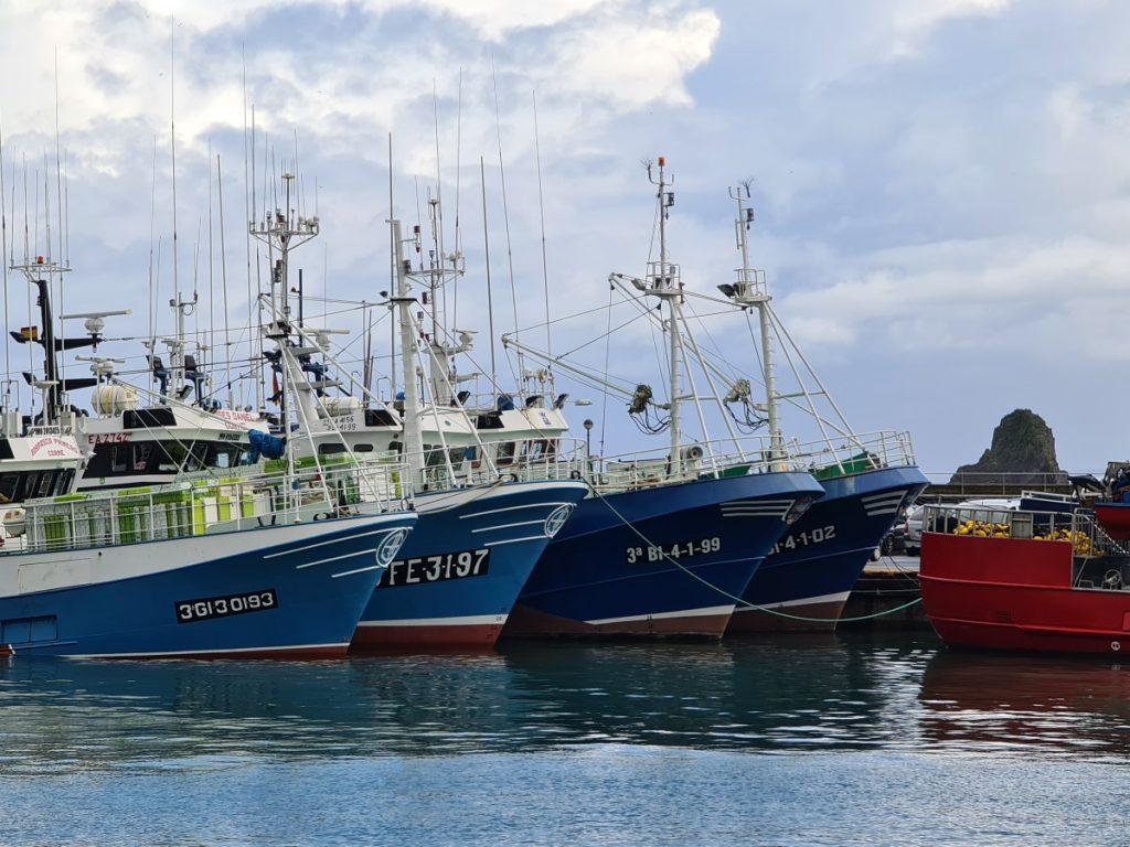 Puerto de Ondarroa - Conservas Olasagasti